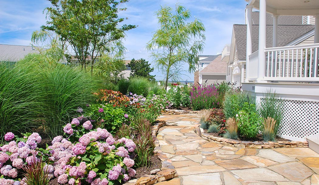 Long Beach Island Planting and Gardens