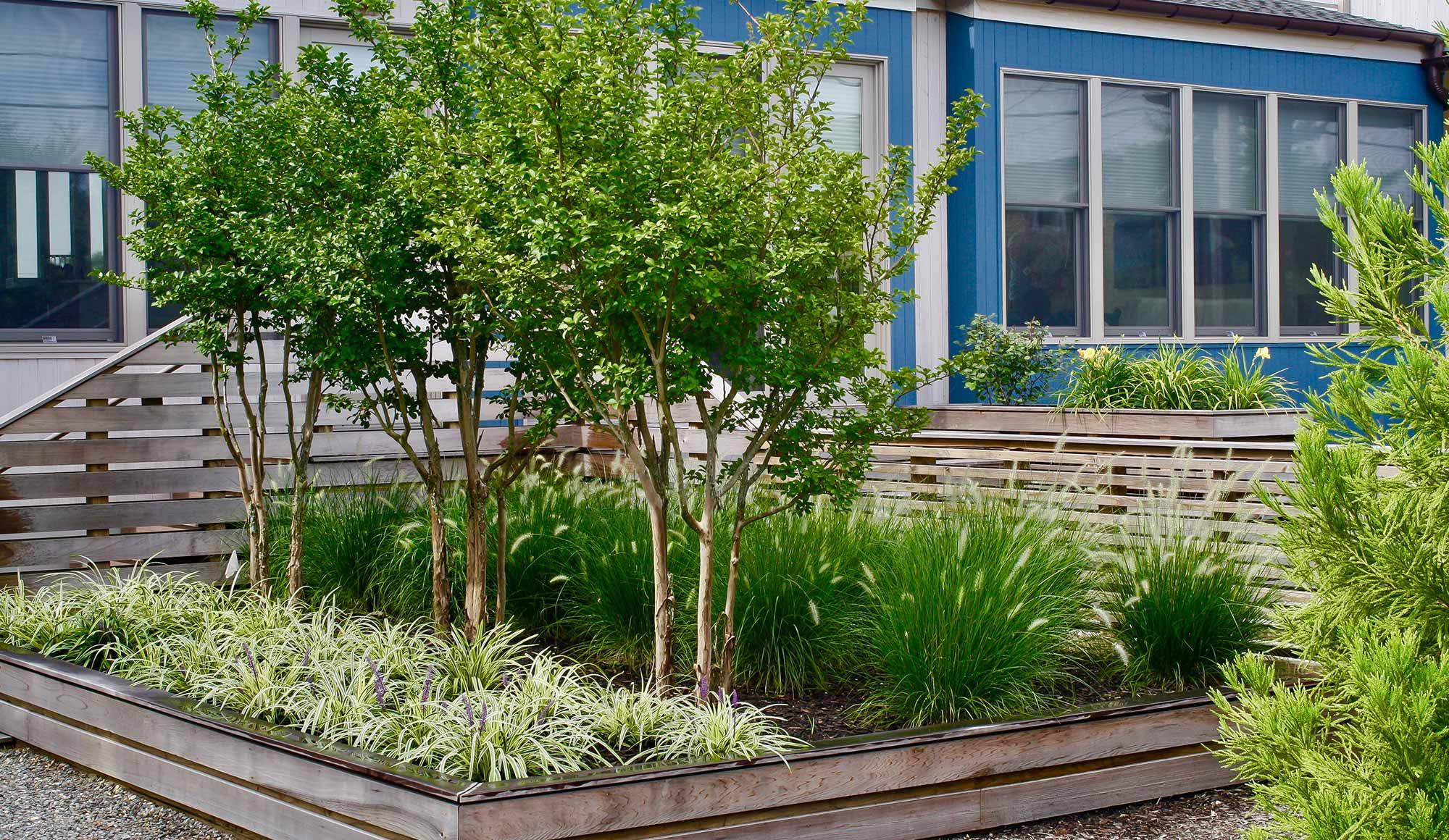 Landscaping, Planting & Gardening | Professional Planting